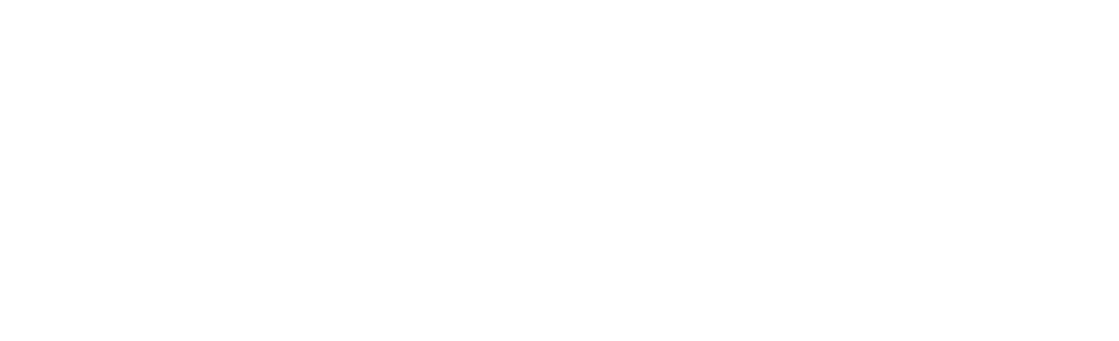 WP Visualize